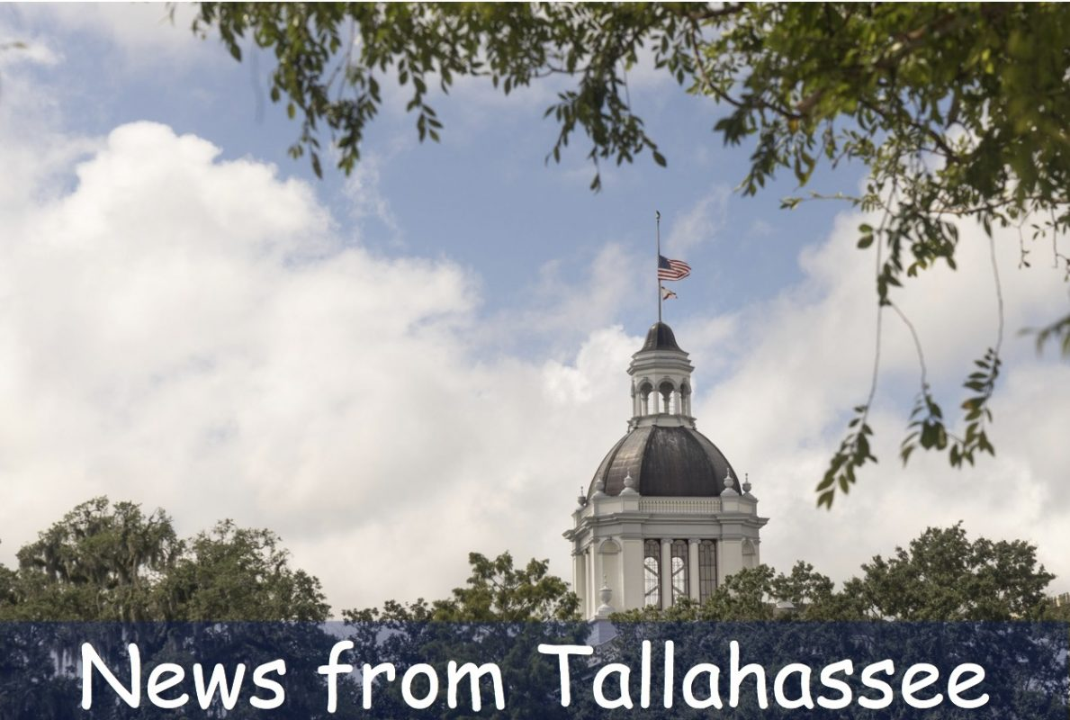 News from Tallahassee