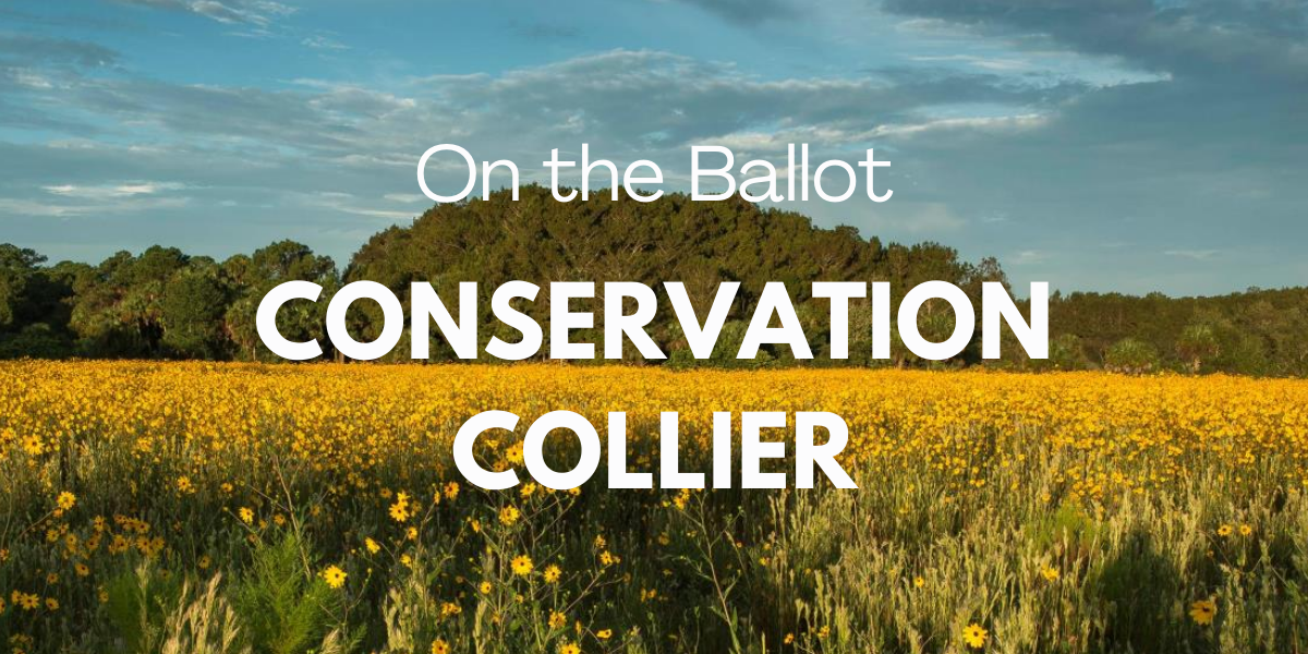 Conservation Collier