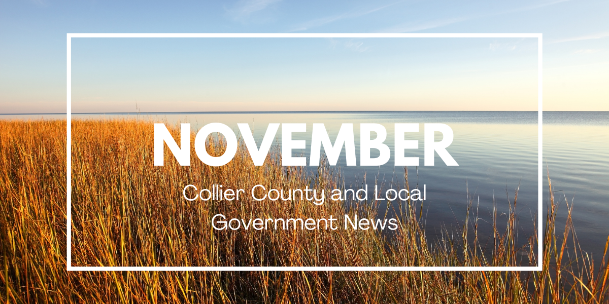 Collier County and Local News for November 2020