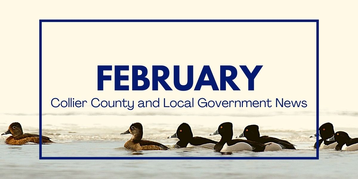 County and Local Government News for February 2021